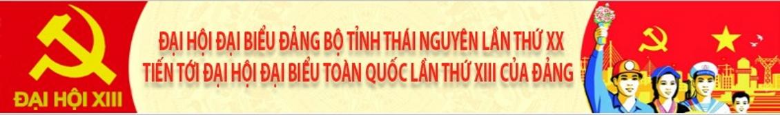 dai-hoi-dai-bieu-dang-bo-thai-nguyen-lan-xx-full-width