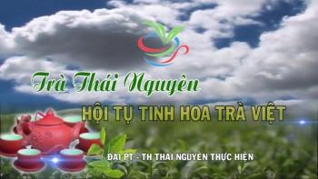 huong toi festival tra tha i nguyen vie t nam la n thu 3 nam 2015