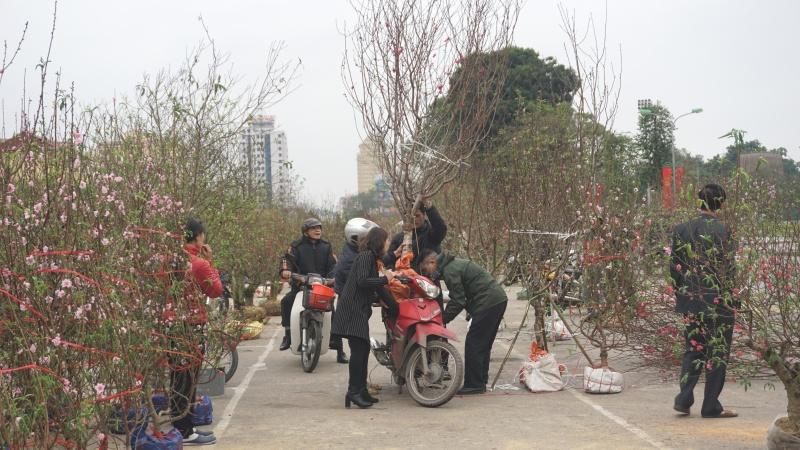 thai nguyen ruc ro cho hoa cay canh ngay tet