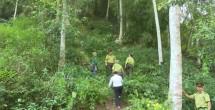 thai nguyen tang cuong cong tac quan ly rung va dat rung