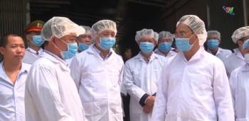 Kiểm tra công tác phòng, chống bệnh dịch tả lợn châu Phi