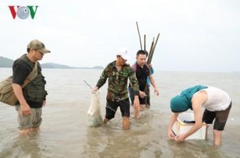 Trải nghiệm tour du lịch cộng đồng tại Quan Lạn, Quảng Ninh