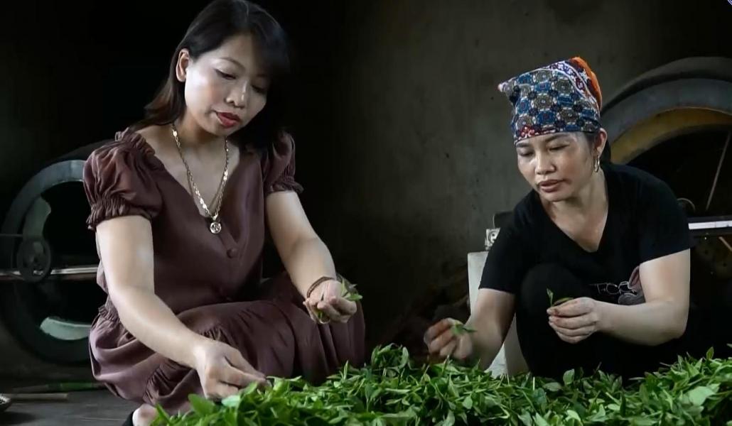 Lan tỏa không gian văn hóa trà giữa lòng TP Thái Nguyên