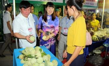 thai nguyen to chuc hoi cho moi xa phuong mot san pham vao dau thang 9 nam 2018