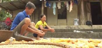 Huyện Võ Nhai: Xã Bình Long gian nan về đích nông thôn mới