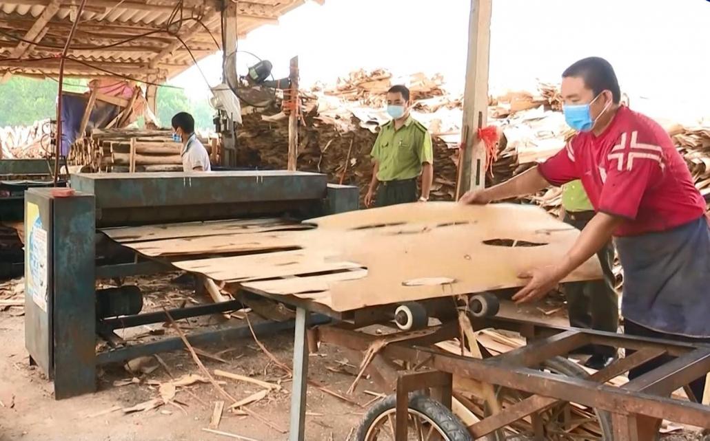 Khó khăn trong sản xuất, chế biến và tiêu thụ sản phẩm gỗ