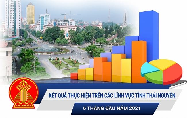 [Infographic]: Kết quả thực hiện trên các lĩnh vực tỉnh Thái Nguyên 6 tháng đầu năm