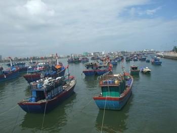 Hải Phòng, Quảng Ninh, Lạng Sơn gấp rút chuẩn bị ứng phó bão số 6