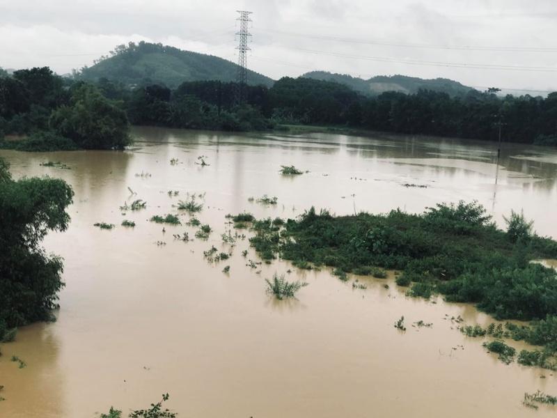 Chủ động các phương án phòng chống bão lũ, kịp thời ứng phó khi có tình huống xấu xảy ra