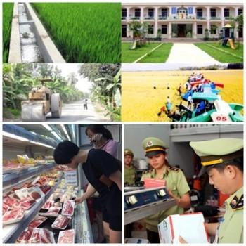 chi dao dieu hanh cua chinh phu thu tuong chinh phu noi bat tuan tu 14 18102019
