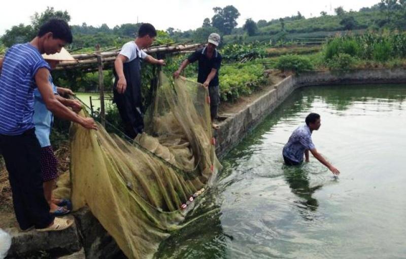 La Hiên xây dựng nông thôn mới bền vững