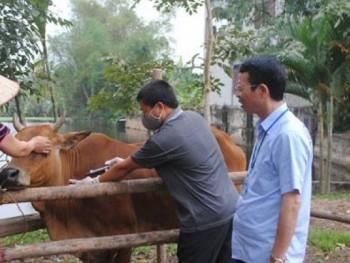 Tăng cường công tác phòng, chống dịch bệnh cho đàn vật nuôi