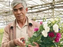 da lat kham kha len nho vay von uu dai de trong hoa