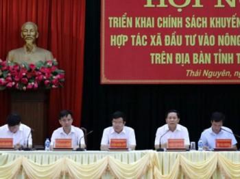 Thái Nguyên khuyến khích doanh nghiệp, hợp tác xã đầu tư vào nông nghiệp nông thôn