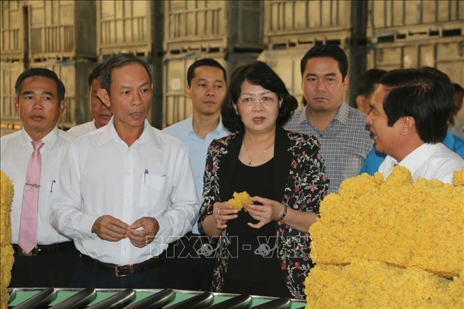 pho chu tich nuoc dang thi ngoc thinh lam viec tai tong cong ty cao su dong nai