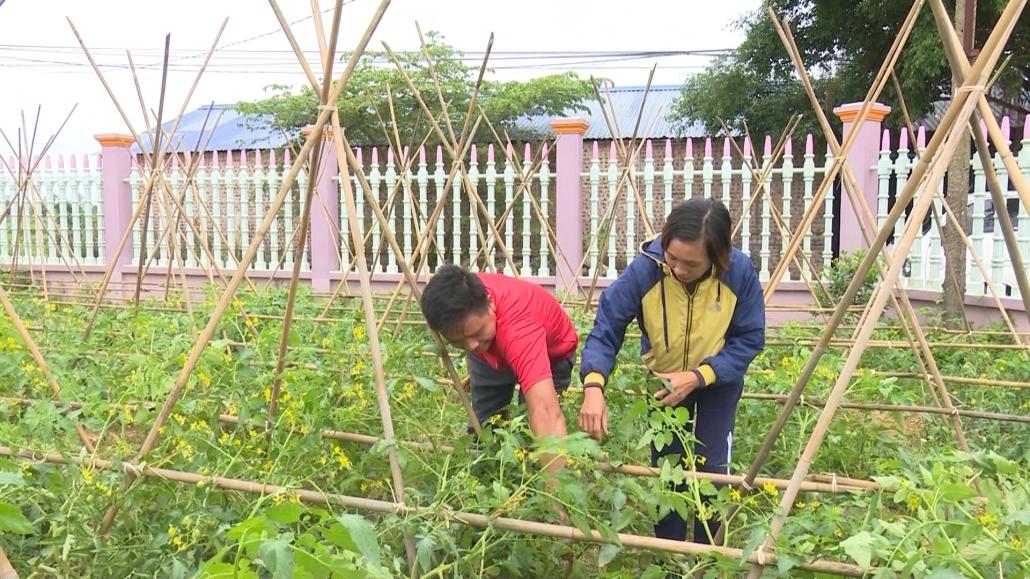 Đẩy mạnh sản xuất nông nghiệp theo tiêu chuẩn VietGap