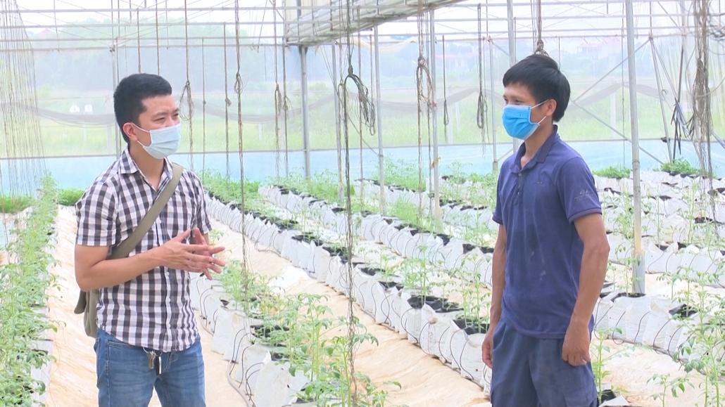 Bàn giải pháp tháo gỡ khó khăn trong sản xuất rau