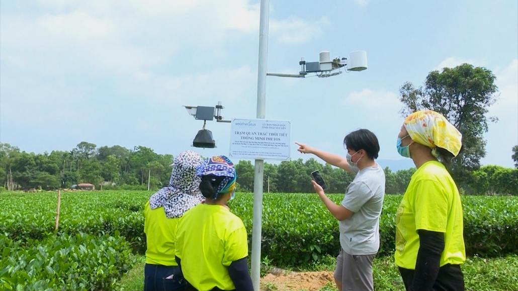Nông nghiệp Thái Nguyên trong lộ trình chuyển đổi số