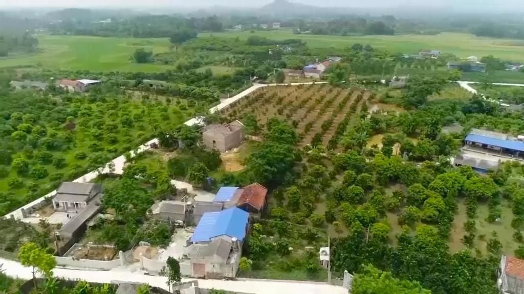 Nông nghiệp phát triển, nông thôn khởi sắc