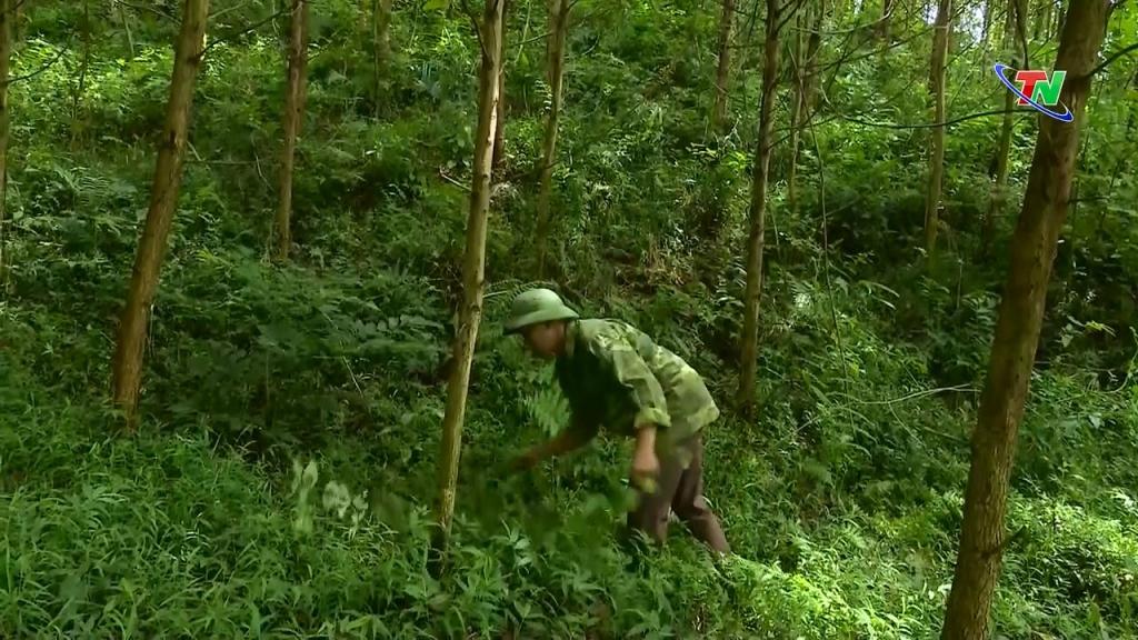 Hiệu quả chính sách vay vốn phát triển sản xuất ở xã Văn Hán, huyện Đồng Hỷ