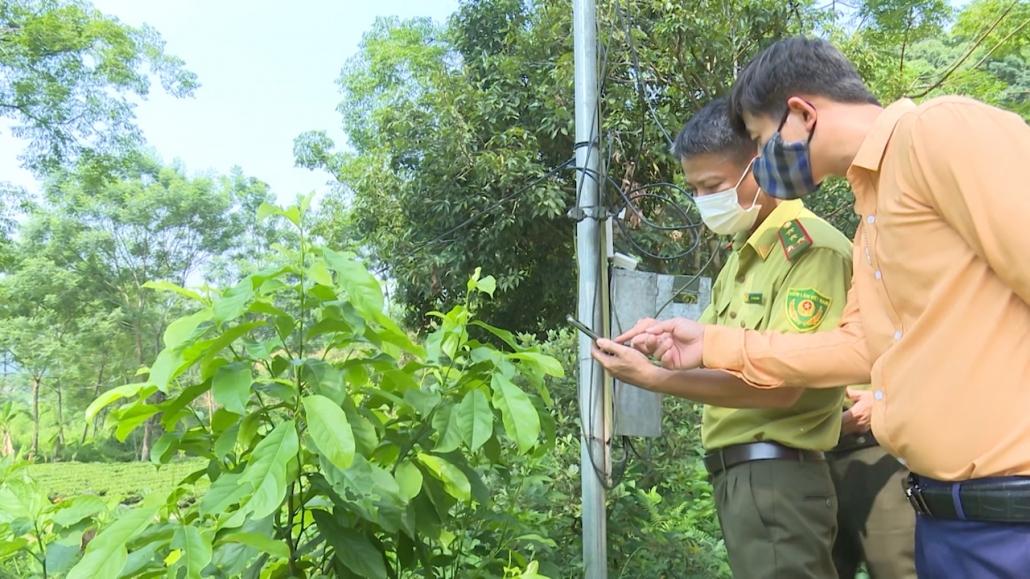 Chuyển đổi số trong quản lý bảo vệ rừng ở Đồng Hỷ