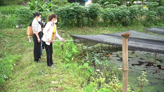 Phụ nữ Thái Nguyên - Dấu ấn một nhiệm kỳ