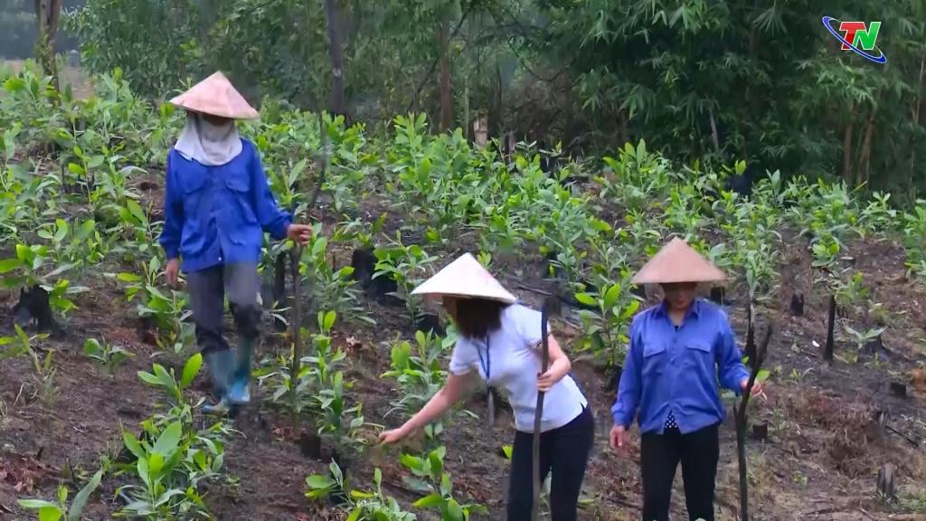 """Hiệu quả từ cuộc vận động """"5 không, 3 sạch"""" của Hội Phụ nữ Phú Lương"""