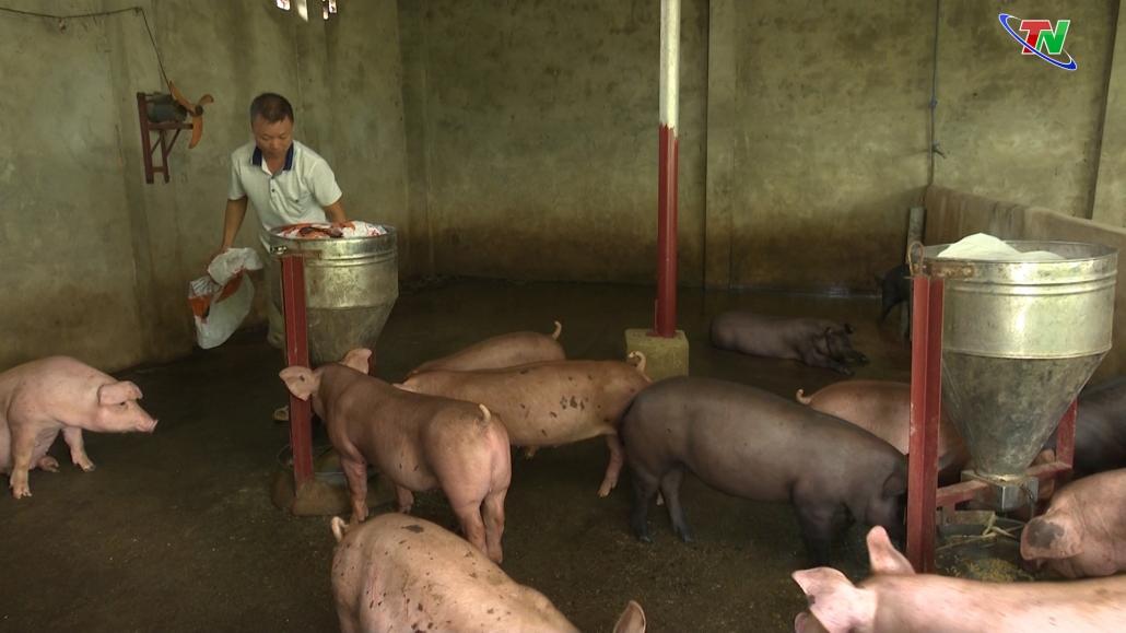 Thái Nguyên đẩy mạnh thực hiện chuỗi liên kết để ngành chăn nuôi phát triển bền vững
