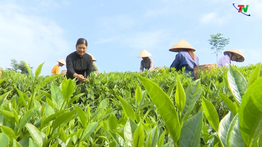 Tiếp nối truyền thống 90 năm thành lập Hội Liên hiệp Phụ nữ Việt Nam