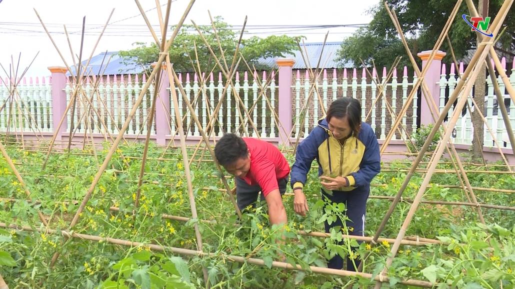 Phú Bình phát huy thế mạnh của hợp tác xã nông nghiệp