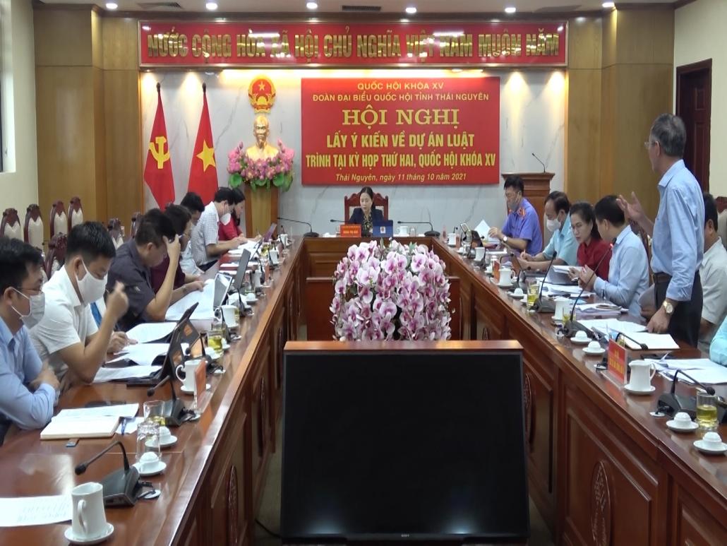 Lấy ý kiến về 2 dự án luật trình kỳ họp thứ 2, Quốc hội khóa XV