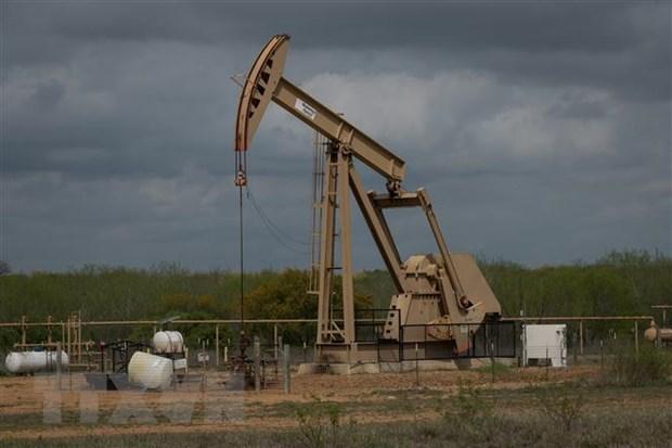 Giá dầu châu Á đi xuống trong bối cảnh dịch COVID-19 lan nhanh tại Anh
