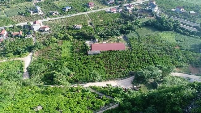 Đánh giá mô hình vườn mẫu phát triển kinh tế tại huyện Võ Nhai