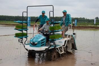 Thanh Oai phát triển nông nghiệp công nghệ cao để xây dựng NTM