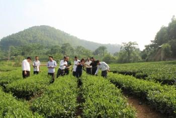 Phú Lương với công tác cán bộ nữ