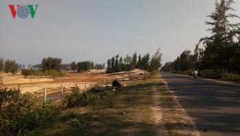Phú Yên đề nghị kiểm điểm làm rõ sai phạm trong quản lý rừng