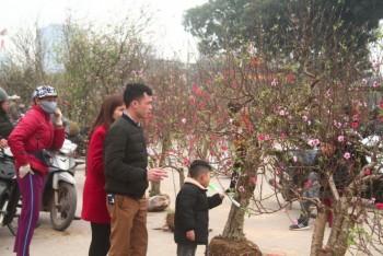 thai nguyen nhon nhip cho hoa ngay tet