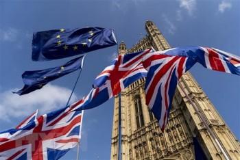 Quan chức Anh nêu quan điểm về đàm phán thương mại với EU