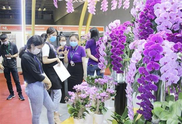 150 doanh nghiep du trien lam ve cong nghe che bien rau hoa qua