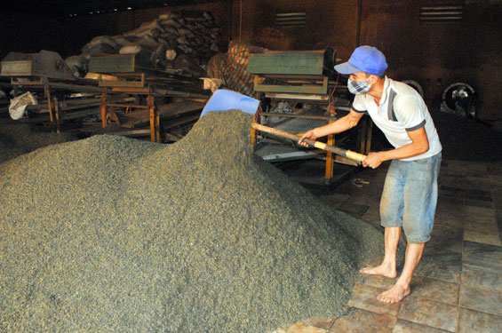 Tổng giá trị xuất khẩu ước đạt gần 3 tỷ USD