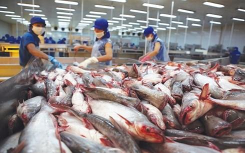 """Đại sứ Daniel Kritenbrink: Thủy sản Việt Nam vẫn """"rộng cửa"""" vào Mỹ"""