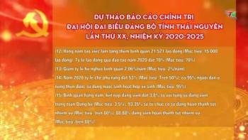 du thao bao cao chinh tri dai hoi dai bieu dang bo tinh thai nguyen lan thu xx nhiem ky 2020 2025