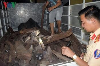 Thừa Thiên-Huế: Bắt giữ xe chở gỗ Trắc không rõ nguồn gốc