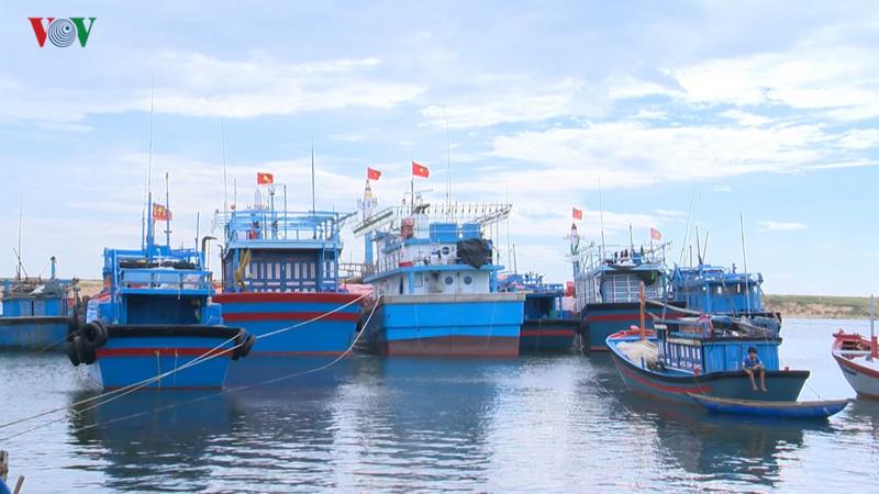 Tàu cá nằm bờ vì phân cấp theo hạn ngạch