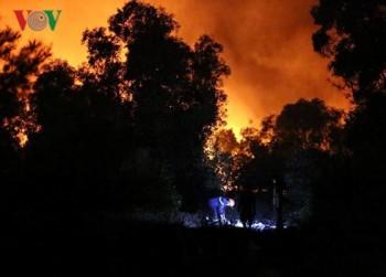 Hàng trăm người tham gia chữa cháy rừng ven biển Quảng Bình