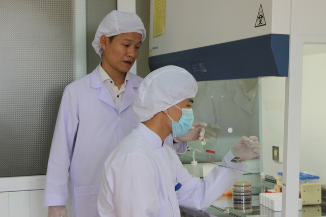 Hà Tĩnh: Gần 40% ca nhiễm Whitmore tử vong