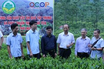 Thị xã Phổ Yên: Tăng cường lãnh đạo, chỉ đạo thực hiện Chương trình mục tiêu Quốc gia xây dựng Nông thôn mới