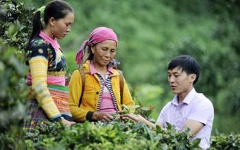 3 thách thức của thanh niên nông thôn khởi nghiệp