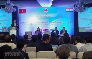 Việt Nam có thể là cửa ngõ cho các doanh nghiệp và hàng hóa Ấn Độ