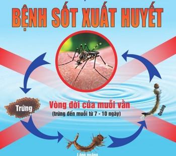 Gia tăng đột biến các ca bệnh sốt xuất huyết ở Gia Lai